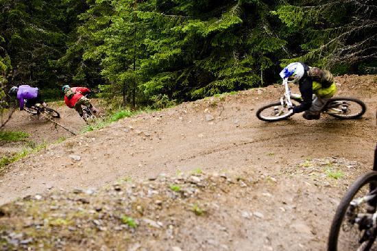 Hafjell Alpinsenter: threes up for fun