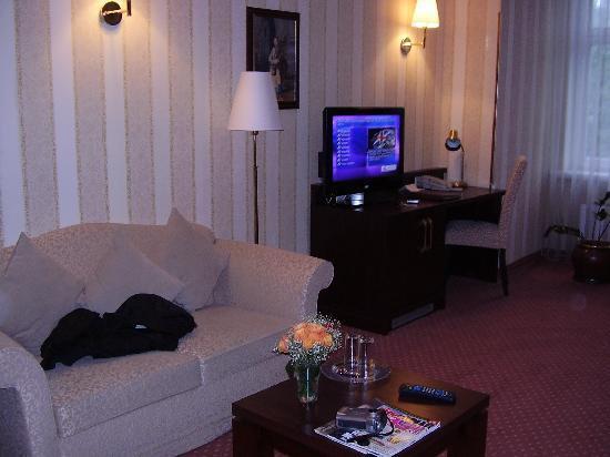 Monika Centrum Hotel: TV and sofa
