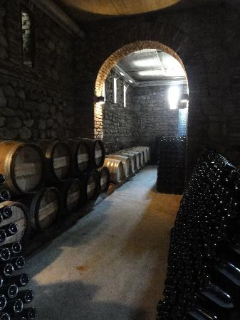 Telavi, Georgia: The wine cellar