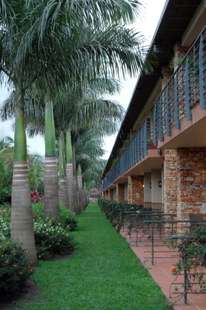 Munyonyo Commonwealth Resort: Landscaping outside Room 525's terrace