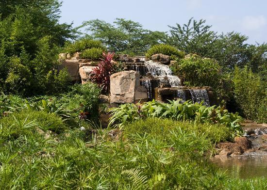 Munyonyo Commonwealth Resort: Waterfall in the gardens