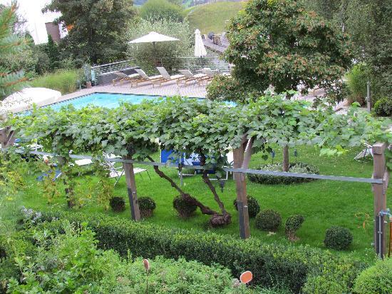 Hotel Heubad: the pool & the garden 2