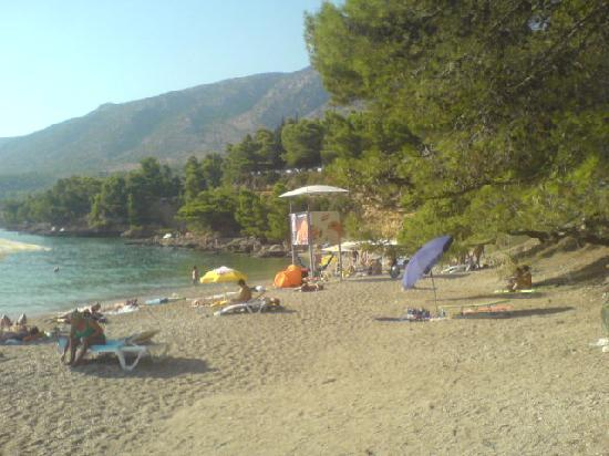 Bluesun Resort Bonaca: nudist beach