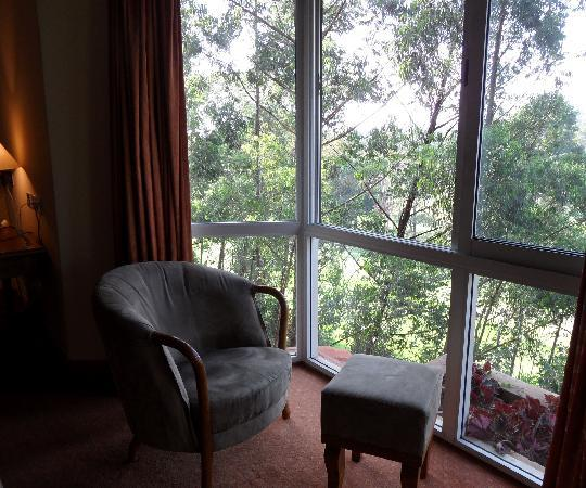 Golf Course Hotel: Window in Room 405