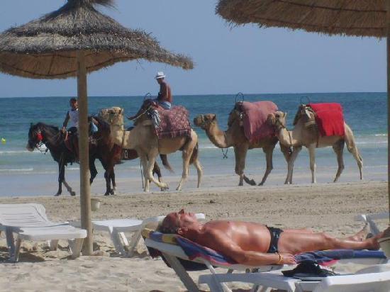 Iberostar Mehari Djerba: plage