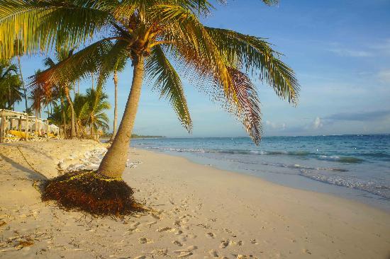 Ocean Blue & Sand : Paradise