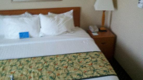 Fairfield Inn & Suites Detroit Metro Airport Romulus: Bed Room pic 1