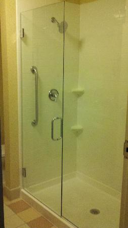 Fairfield Inn & Suites Detroit Metro Airport Romulus: Bathroom Shower