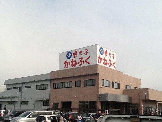 Oarai-machi, Япония: 遠くから見えるよ~