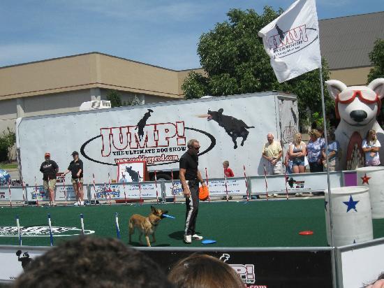 Kentucky Fair and Exposition Center : The Frisbee dog show.