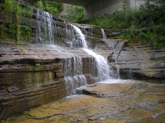 Finger Lakes Waterfall Resort: Hector Falls