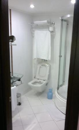 Cartoon Hotel: toilet .