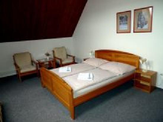 Luhacovice, สาธารณรัฐเช็ก: Room 301