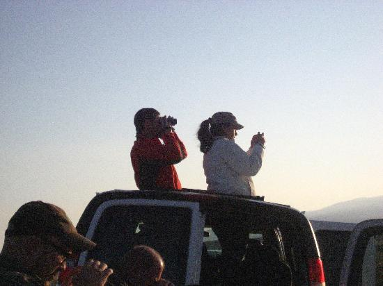 Wildlife Expeditions of Teton Science Schools: Watching wildlife through roof hatches