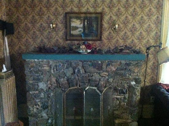 Pansy's Parlor Bed & Breakfast: Fireplace made of various rocks from School of Mines