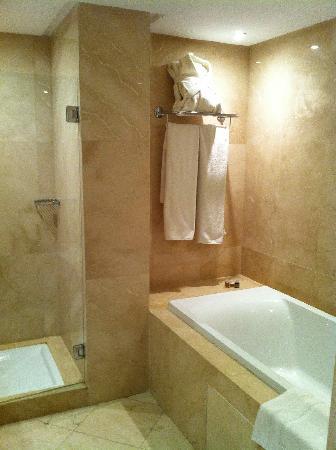 Suites Hotel Mohammed V: Shower