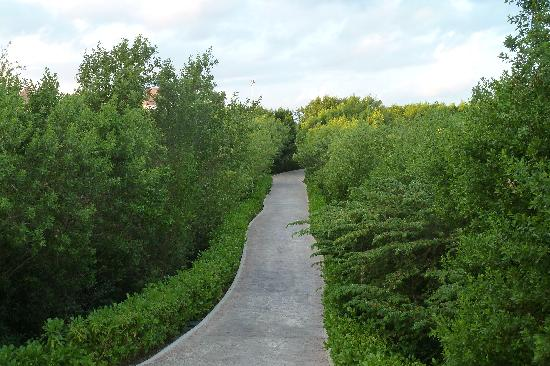 BlueBay Grand Esmeralda: View of the pathway from our building to the hotel lobby/shop area