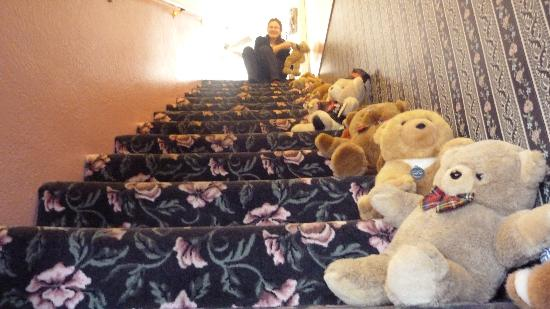"Canyon Country Inn Bed & Breakfast: L'escalier ""Teddy Bears"""