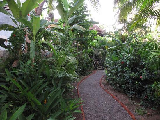 Kafu Resort & Spa: garden