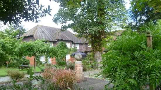 The Elephant at Pangbourne: Elephant from Garden