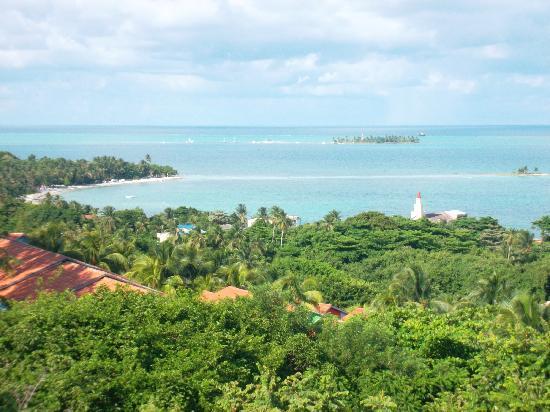 Decameron Los Delfines: Vista desde el Mirador del Jardin Botanico