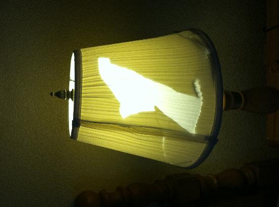 BEST WESTERN Radford Inn: Torn Lamp Shade