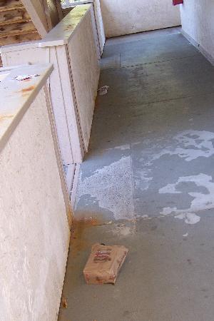 Red Roof Inn Milford: trash in hallway