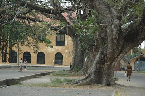 Pilgrims Lounge: galle fort