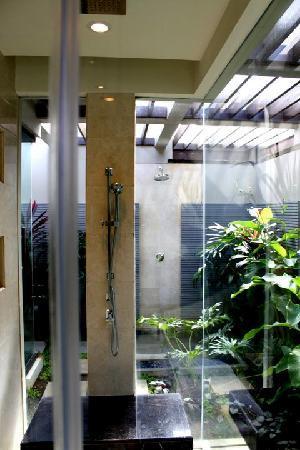 Banyan Tree Ungasan, Bali: The standing shower