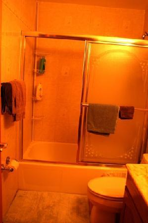 Jersey City Bed & Breakfast: bathroom in suite