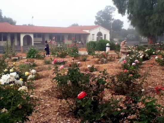 King Frederik Inn : Walk to Mission Santa Inez