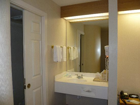 Sleep Inn Bryson City - Cherokee Area: Handbasin