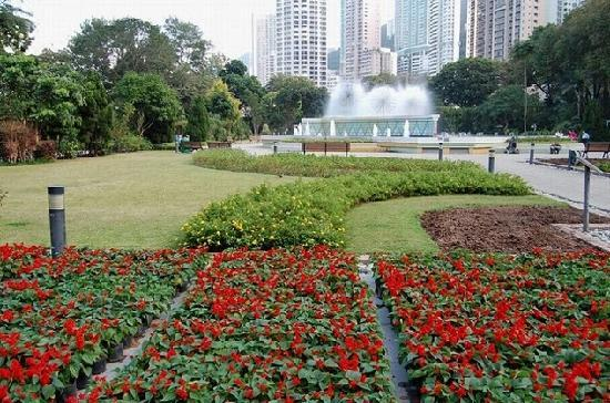 Hong Kong Zoological And Botanical Gardens China Top Tips Before You Go With Photos