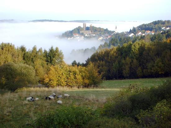 Naturpark Hotel Weilquelle: Burg Oberreifenberg