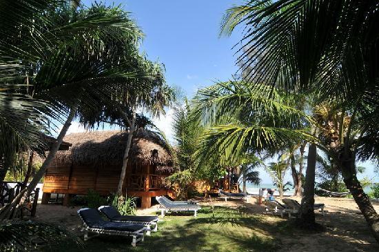 Ganesh Garden Beach Cabanas: Garten Und Hütte