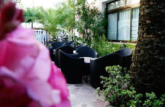 Hotel Bersoca: Terraza