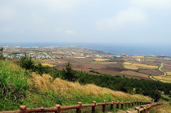 Jeju, Sydkorea: Farms on the island