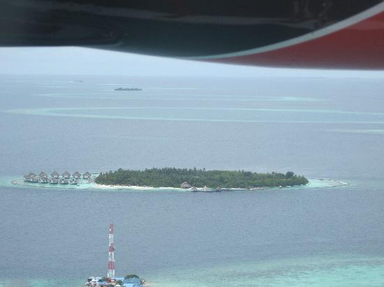 Ellaidhoo Maldives by Cinnamon: A Jewel of an island