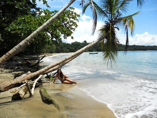 VIP Hotel Playa Negra: Punta Uva