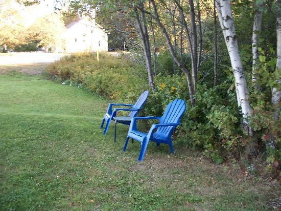 Belle Isle Motel: A couple of chairs set against the woods
