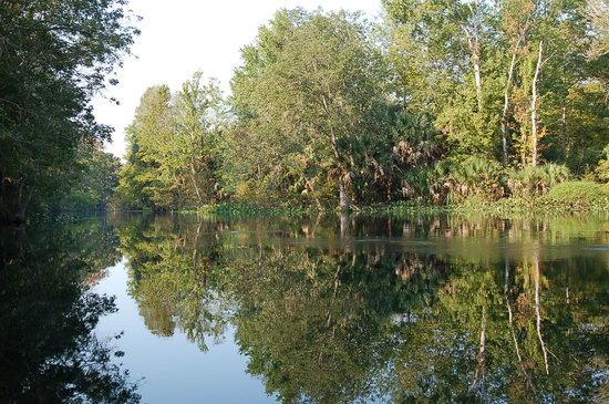 Silver Springs, Floride : Silver River