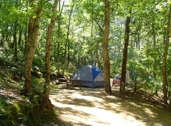 Sweetwater Forest Campground: Tent camping at Sweetwater Forest-Tents only-No RVs Allowed