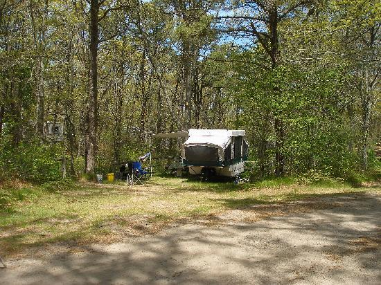Sweetwater Forest Campground: Popup Camper with large RV privacy screened by Sweetwater's Native Cape Cod Forest
