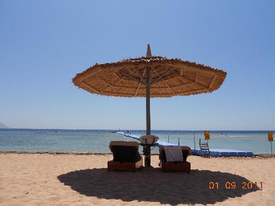 Coral Sea Sensatori - Sharm El Sheikh: spiaggia e pontile
