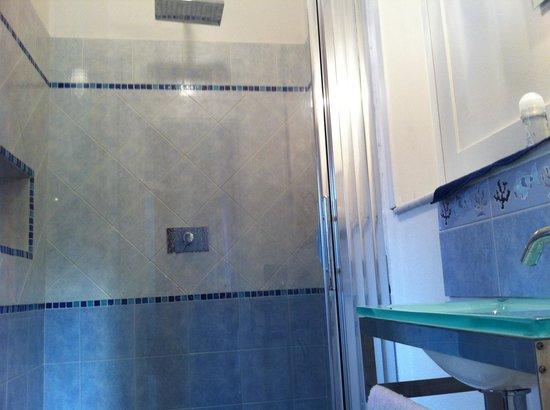 1^bagno con solo doccia e piccolo lavandino foto di bed