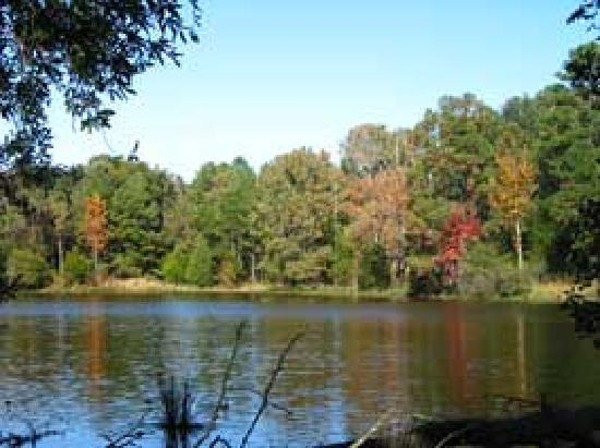 Oak Manor Bed & Breakfast/Pine Grove Cottages: Pine Grove Lake