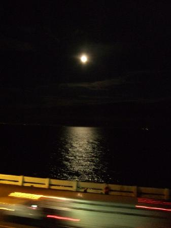Surf Motel: Moon over water at night. If only this could be my view every evening.