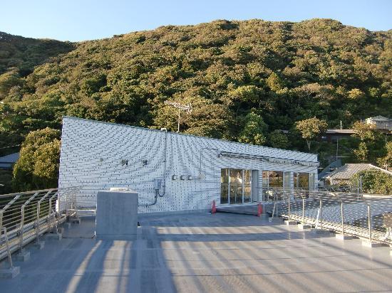 Hayama-machi, Japón: ホテルの裏は山