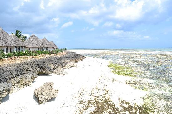 Essque Zalu Zanzibar: View from the Jetty at low tide
