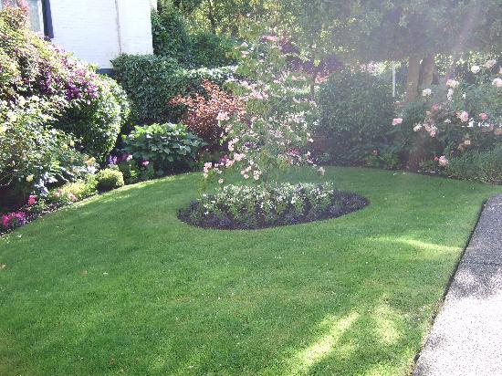 James Bay Inn Hotel, Suites & Cottage: garden in front of suites - they take the plants seriously.